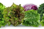 leafy greens help clear the lymphatic system to aid tattoo removal